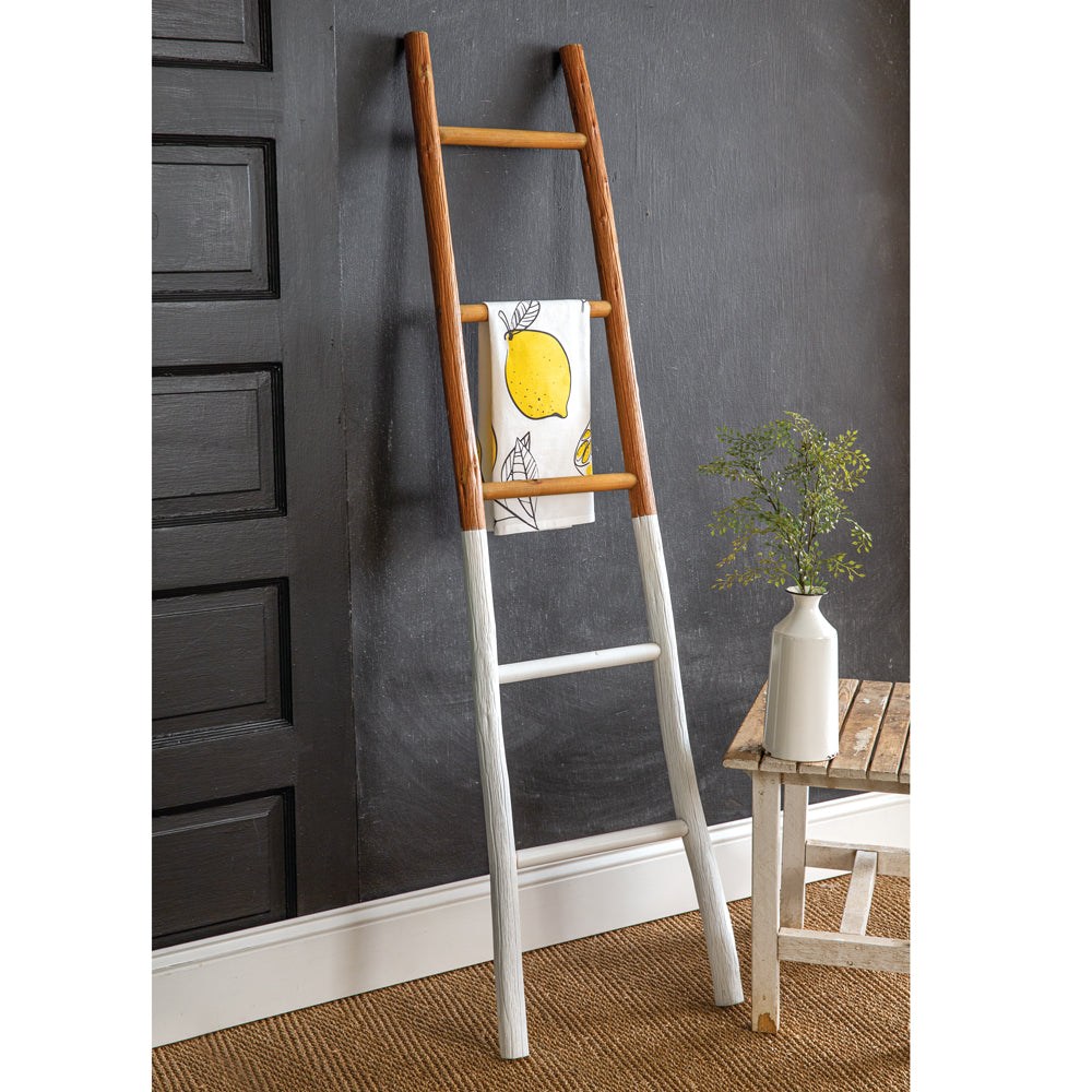 Decorative Two-Tone Ladder