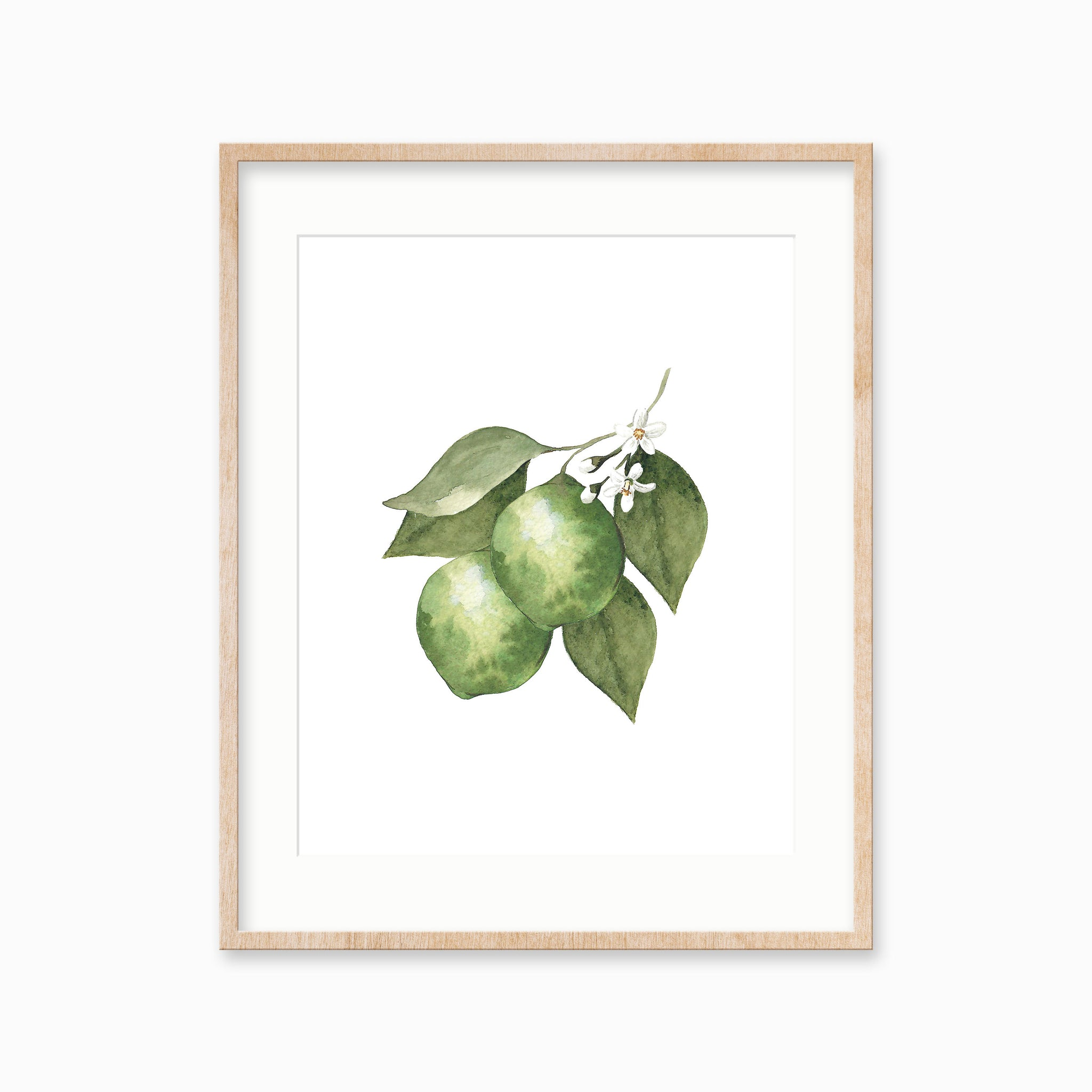 Lime Watercolor Art Print