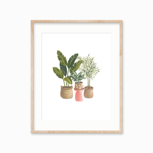 Houseplant Trio Art Print