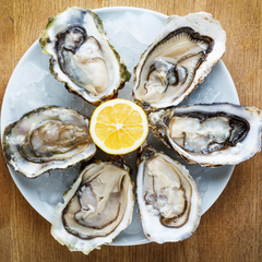 oysters are good nutritional support when coming off hormonal birth control
