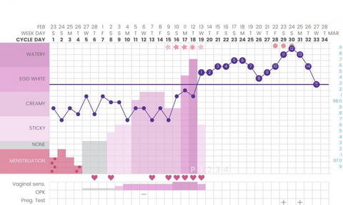 photo about Basal Body Temp Chart Printable titled Detecting Being pregnant or Ovulation upon Your Basal Entire body