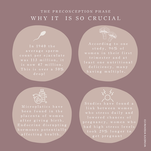 Why the Preconception Phase is so crucial Infograph