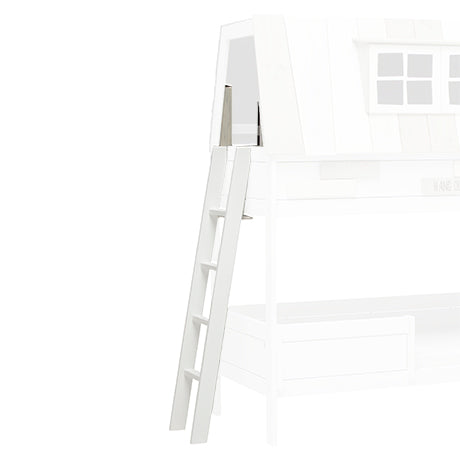 Large ladder for My Hangout