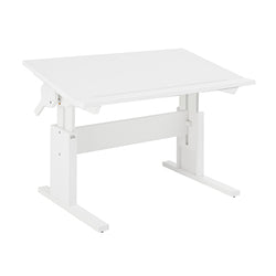Height and slanted adjustable desk