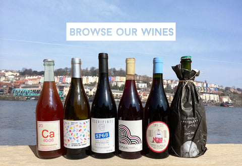 line of natural wines on wall by harbour