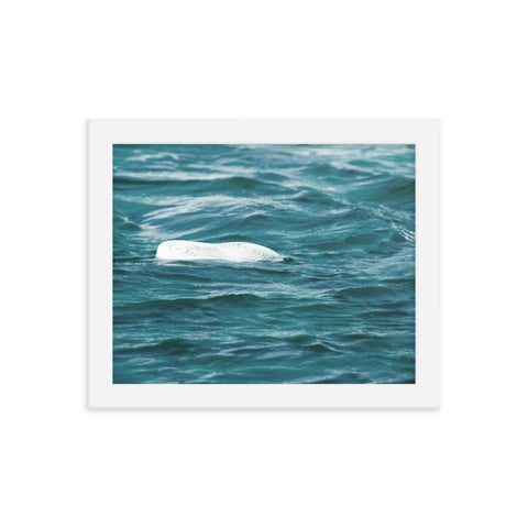 Blood in the Water Floating Sneaker Framed Poster - Patient Shark