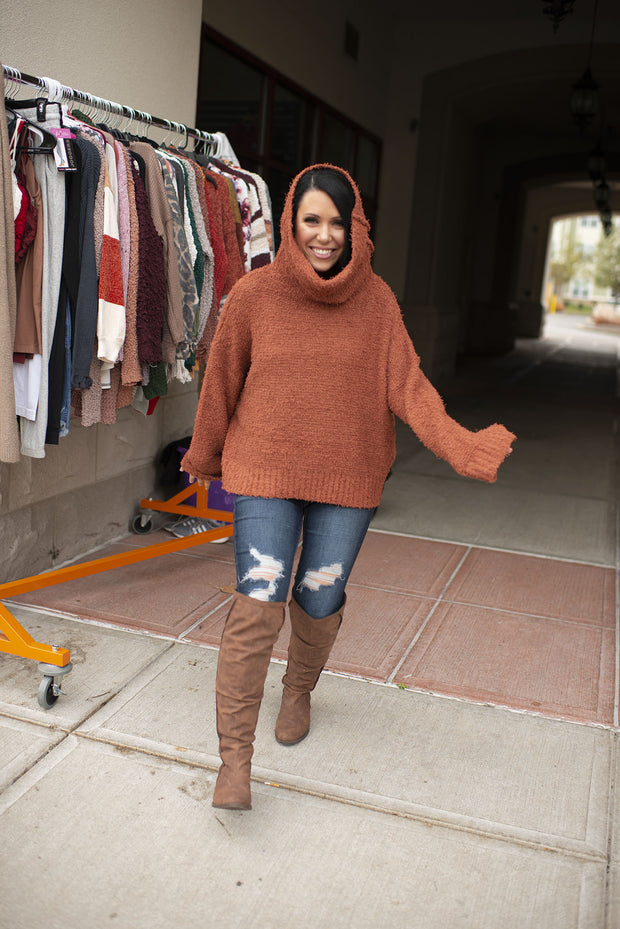 Shaggy Turtleneck Sweater (Brick) FINAL SALE