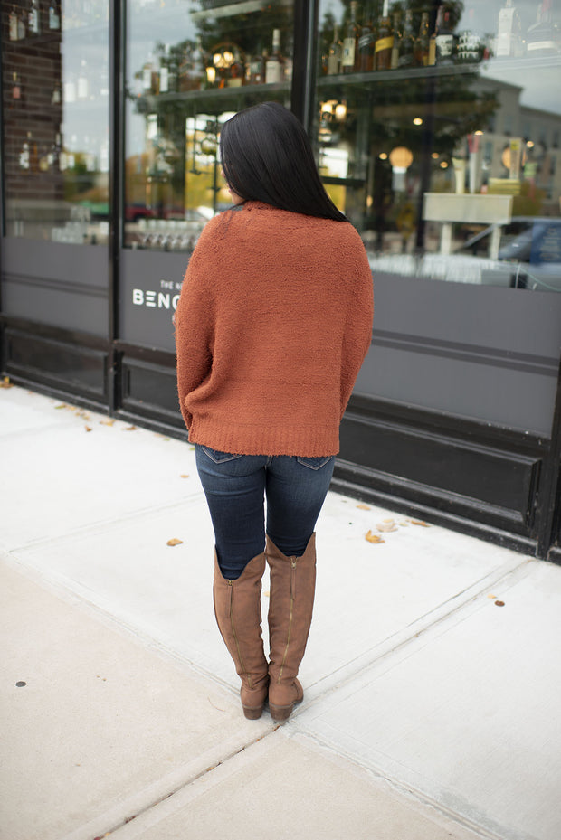 Shaggy Turtleneck Sweater (Brick)