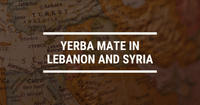 Yerba Mate in Lebanon and Syria