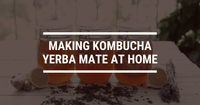 Making Kombucha Yerba Mate at Home: A Step-By-Step Guide