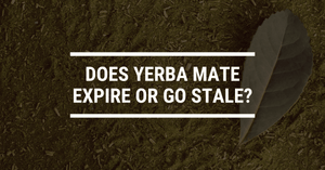 Does Yerba Mate Expire or Go Stale?