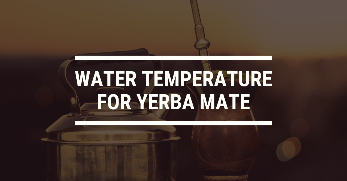 What's the Best Water Temperature for Yerba Mate?