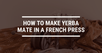 How To Make Yerba Mate In A French Press