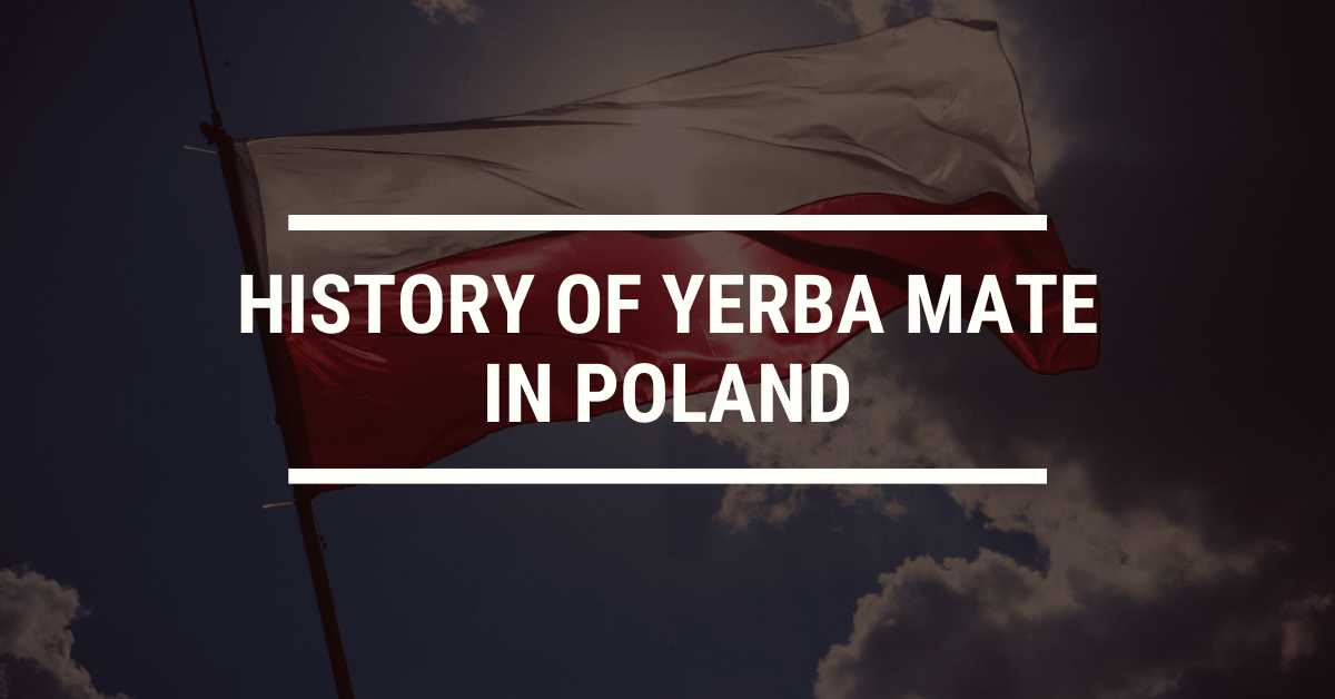 History of Yerba Mate in Poland