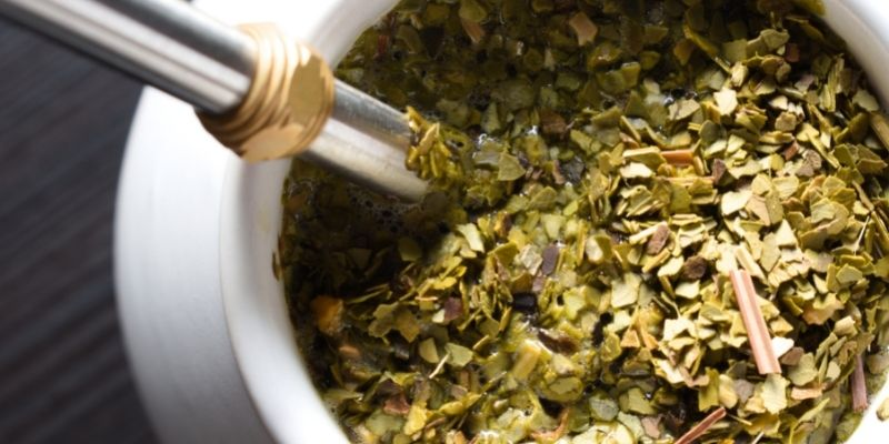 Up Close with Yerba Mate in a Cup