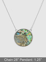 Load image into Gallery viewer, Abalone Shell Round Metal Long Necklace