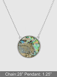 Abalone Shell Round Metal Long Necklace