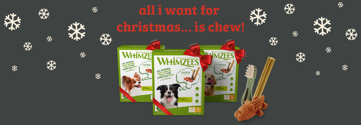 All I Want for Christmas is Chew! Introducing the NEW WHIMZEES Variety Pack & Our Top Christmas Treats