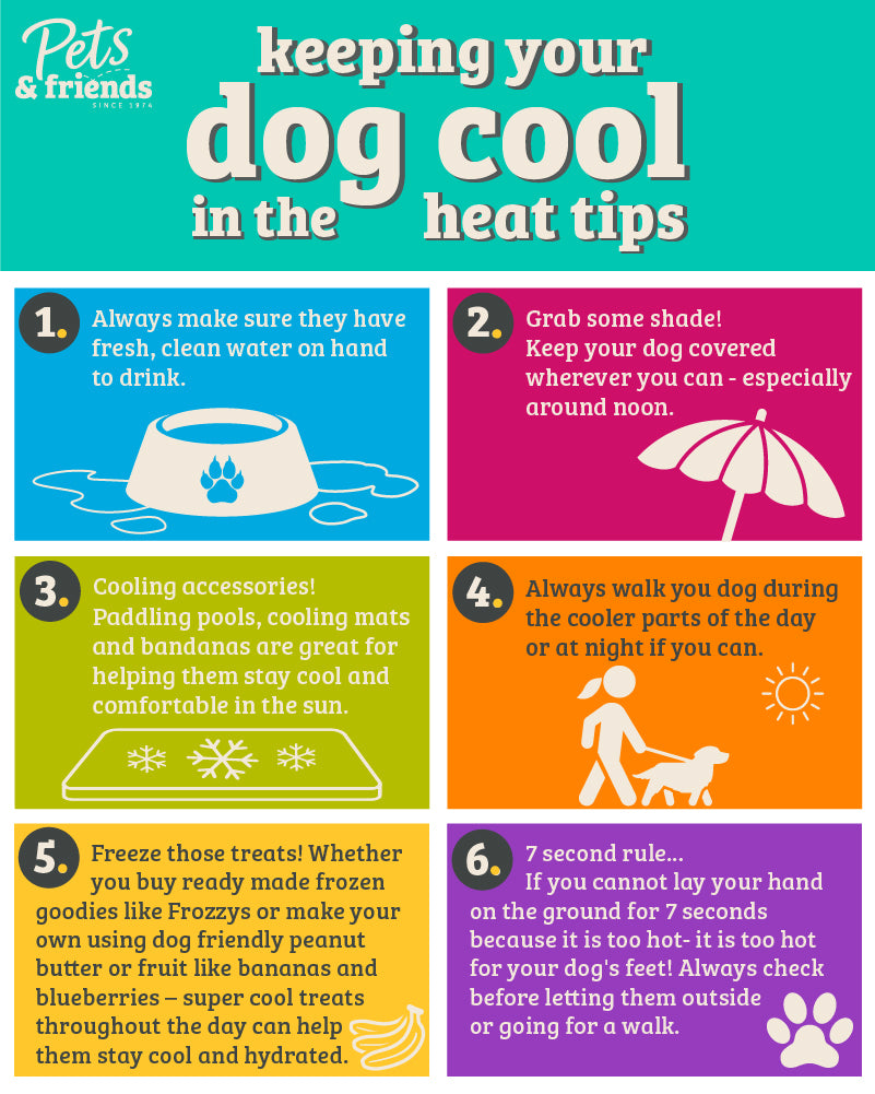 heat tips for dogs