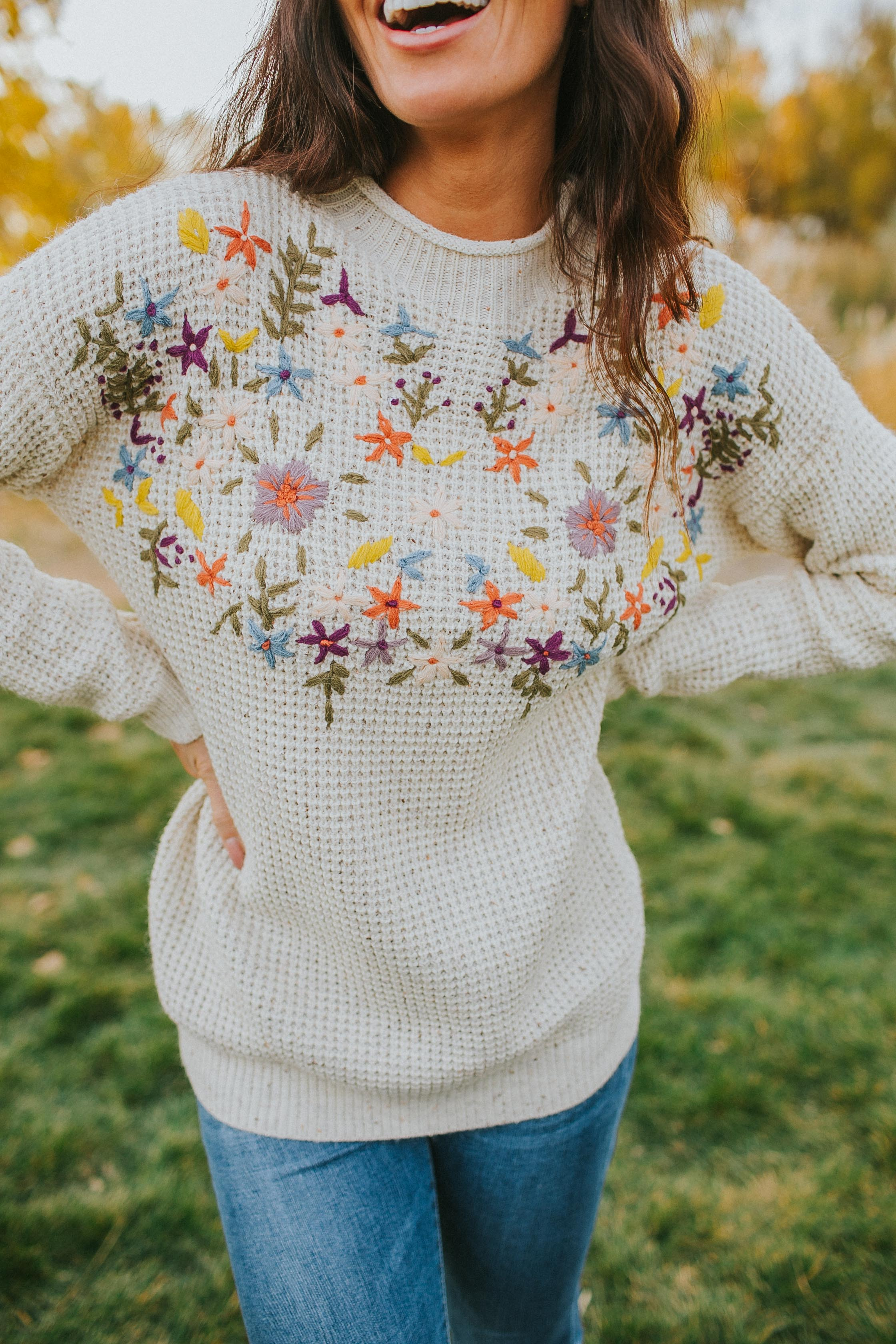 Imogen Embroidered Sweater in Oatmeal