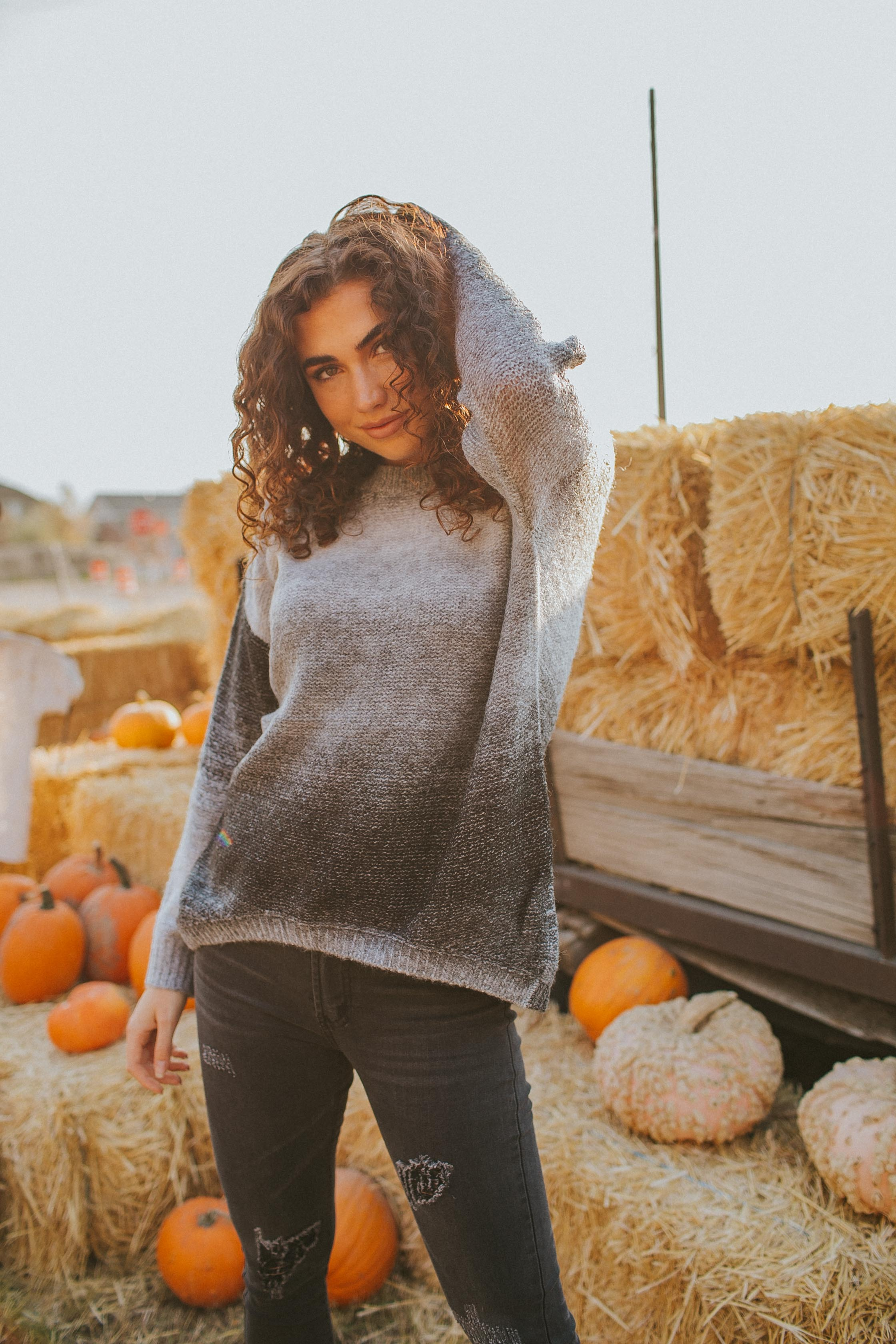 Spencer Ombre Sweater
