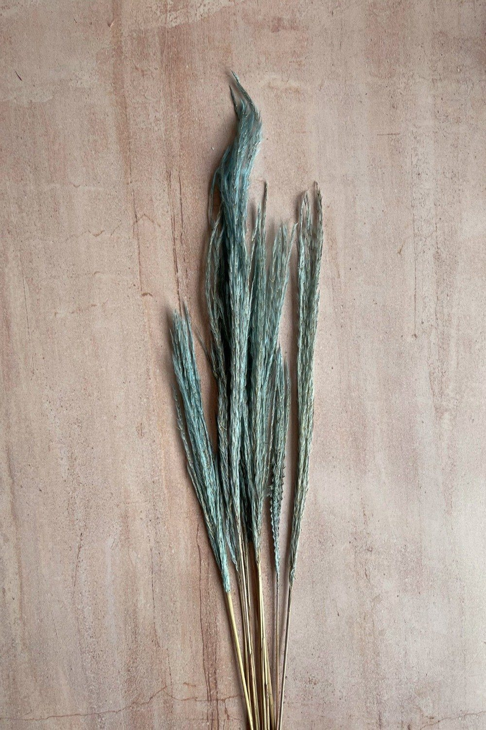 Dried Stipa Grass Mini Bunch - Light Blue Dried Flowers Blume