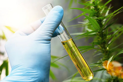 CBD infused products