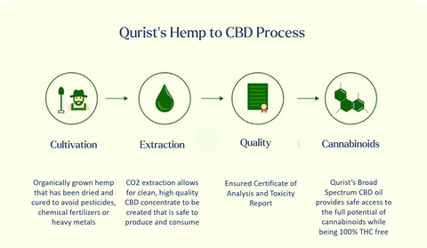 CBD, our process, extraction, cultivation