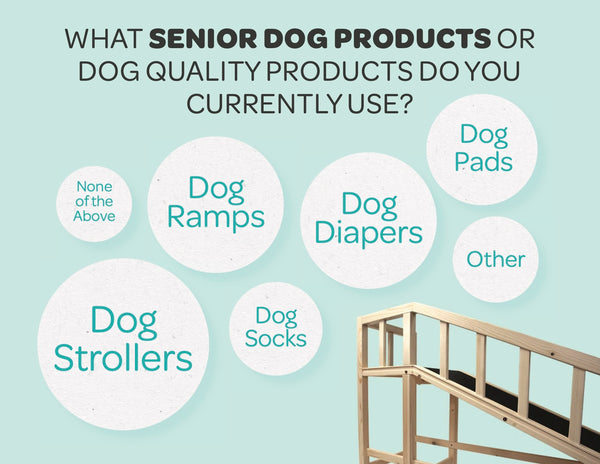 senior-dogs-products