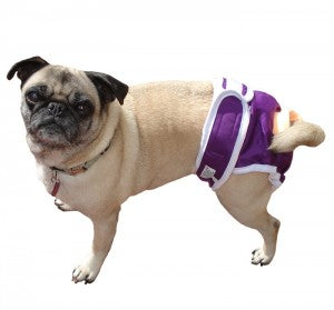 Reusable Cloth Dog Diapers