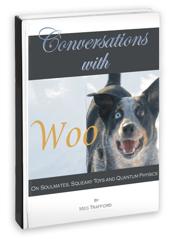 Book Review: Conversations with Woo by Meg Trafford