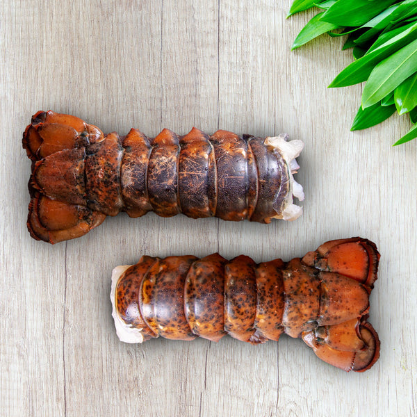 Pair of 8 oz Cold Water Lobster Tails