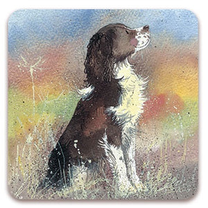 Alex Clark | Jerry Dog Coaster