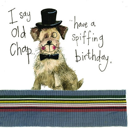 Alex Clark | Posh Paws Border Terrier Dog | Birthday Greetings Card