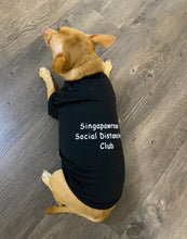 Load image into Gallery viewer, Singapawrean T-Shirt for Paw-Kid