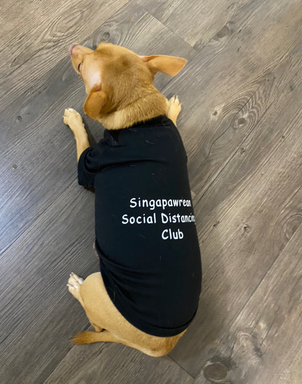 Singapawrean T-Shirt for Paw-Kid