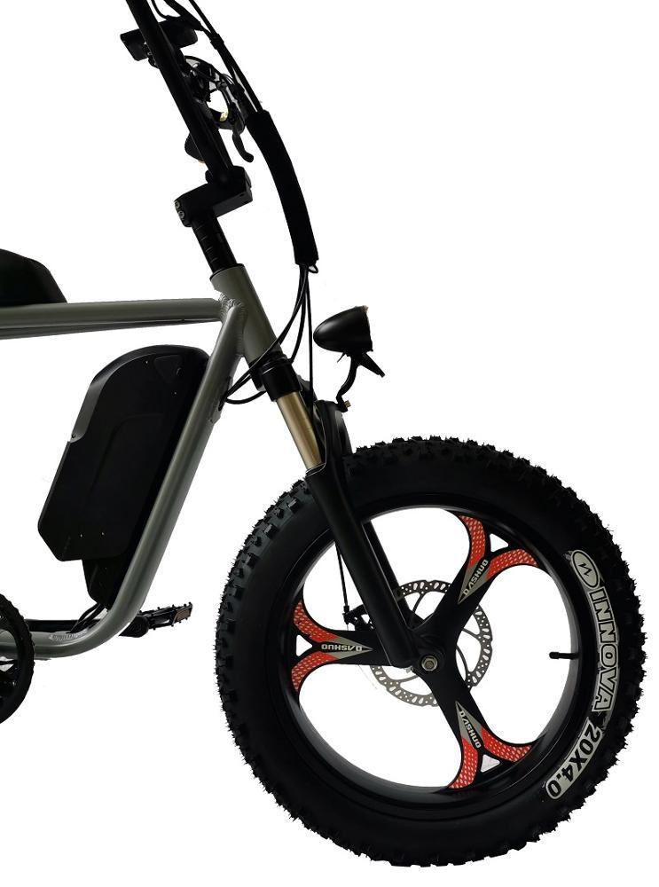 QUEENE / 73 Ebike 750w / 1000W Retro Chopper Fat Tire - ebikey