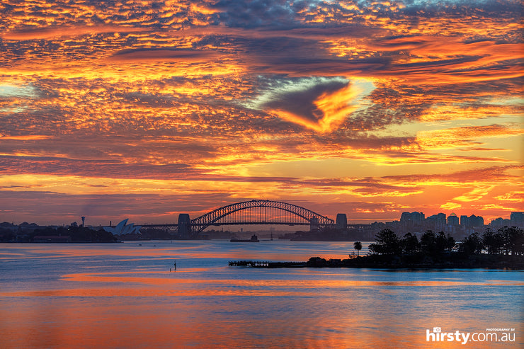 Cloud of Love, Sydney Harbour