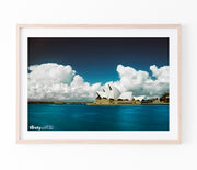 Cotton, Sydney Harbour