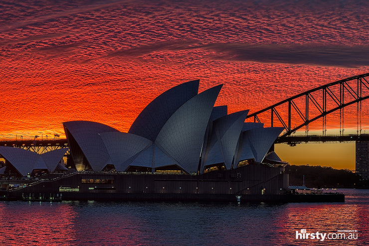 Simply Red, Sydney Harbour