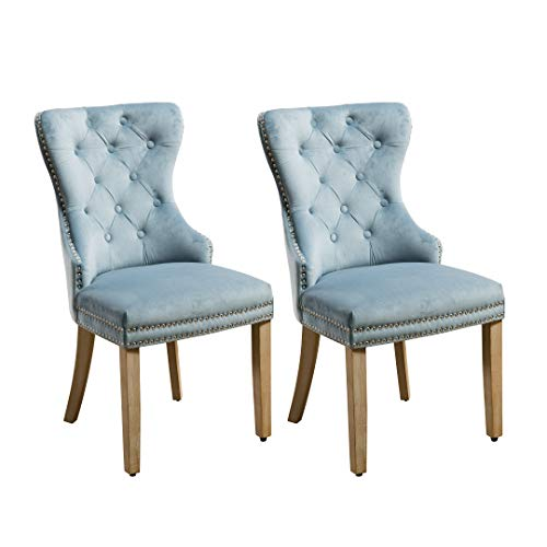 Velvet Fabric Chair Leisure Padded Chair Set of 2- Blue - Home Furnishing Goods