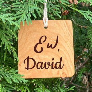 Schitt's Creek Inspired Ornament - Ew, David