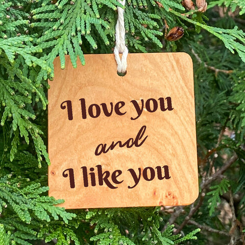 I love you and I like you ornament on pine tree background