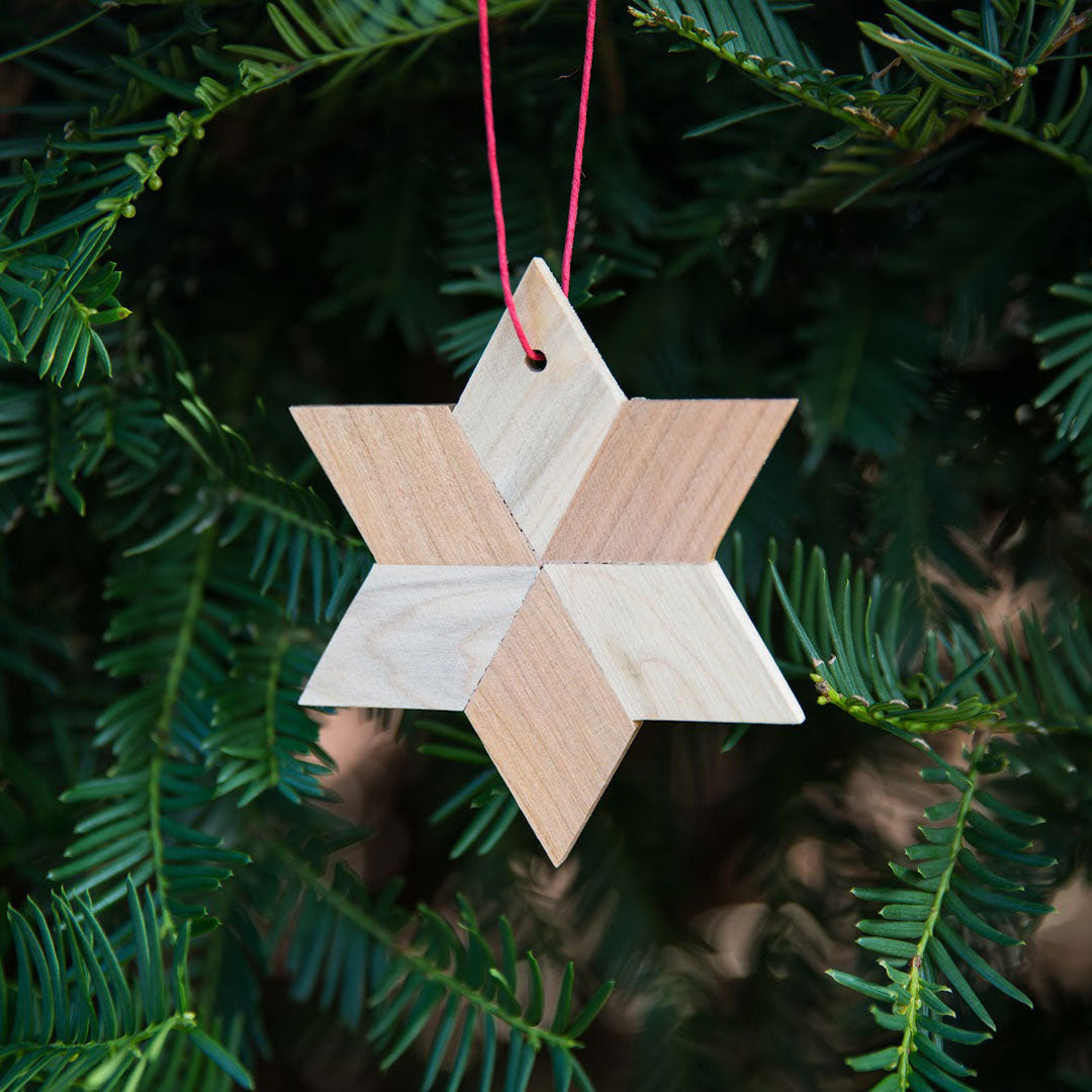 Wood star ornament with ash and cherry. Hanging in a pine tree.