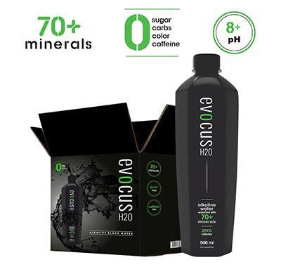 Black Alkaline Water with 70+ Natural Minerals, 8+ pH Alkaline Water (500ml) Pack of 24