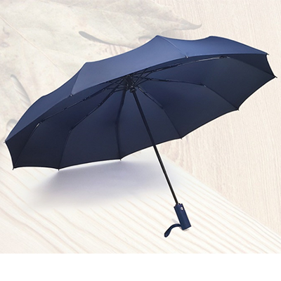 Foldable Windproof Auto Umbrella with PP Handle