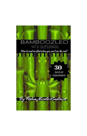 PRE- ORDER - DROPS MARCH 9, 2021. BAMBOOZLED INTO BLESSINGS Digital Ebook