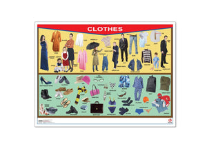 Póster Clothes/Family Tree - Educatodo  - Póster