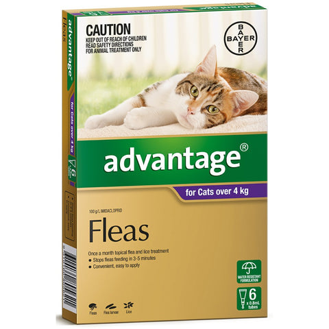 Advantage Cat Over 4kg 6 pack