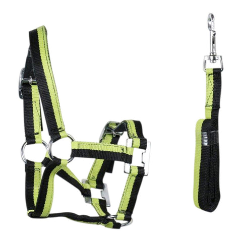 Eureka Miniature Halter and Lead Set